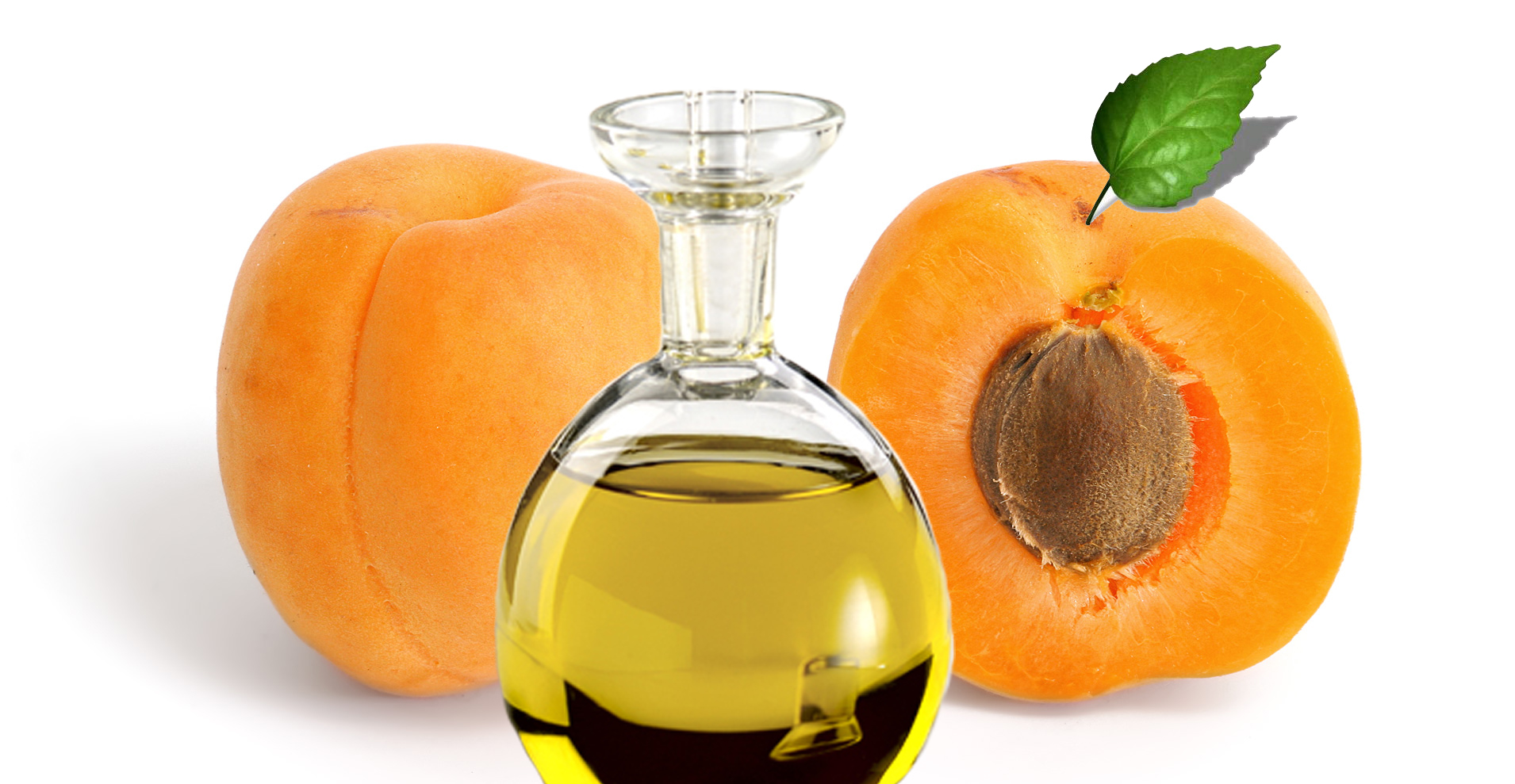 Apricot-Seed-Oil